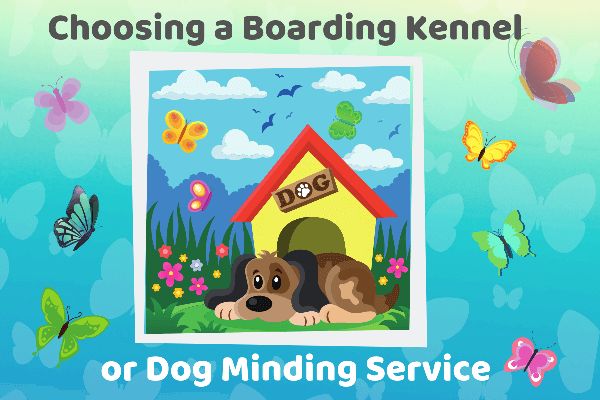 Choosing a Boarding Kennel