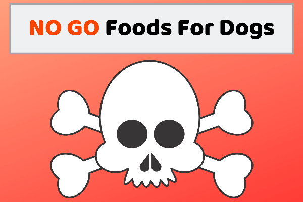 NO GO Foods For Dogs