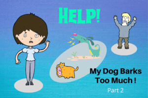 Help My Dog Barks Too Much - Part 2